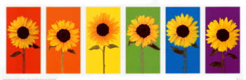 ARV-022~Sunflower-Rainbow-Posters.jpg